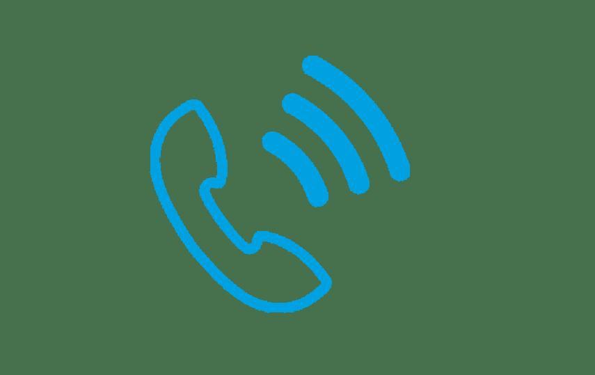Bulk voice call